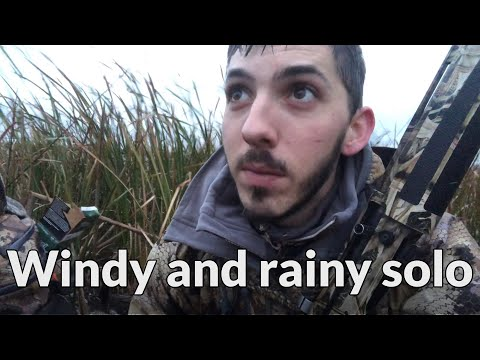 Solo Hunt In The Rain And Wind - Public Land Duck Hunting 2018