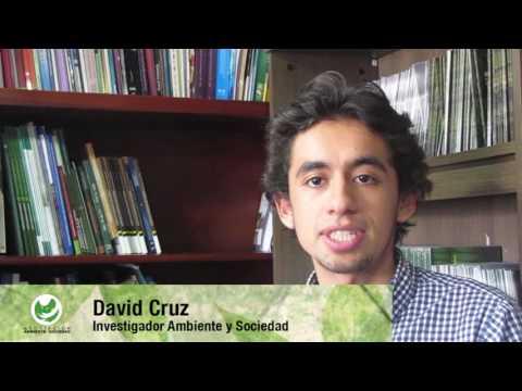 Si Ambiental por la Paz Territorial ¬ - Posconflicto Colombia