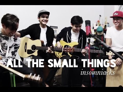 Insomniacks - All The Small Things (cover)