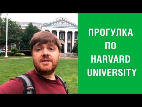 #19. Учеба в США Harvard. MBA в Harvard University.