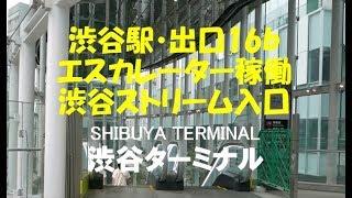 渋谷駅・出口16bエスカレーター稼働・渋谷ストリーム入口