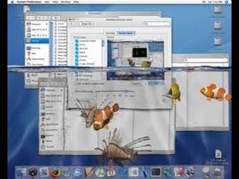 Watery Desktop 3d Animated Wallpaper And Screensaver Registration Code Watery Desktop 3d Serial Doovi