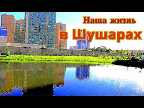 Переезд в Санкт-Петербург: посёлок Шушары