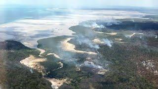 40 Prozent abgebrannt: Schwere Buschfeuer auf Touristeninsel Fraser Island in Australien