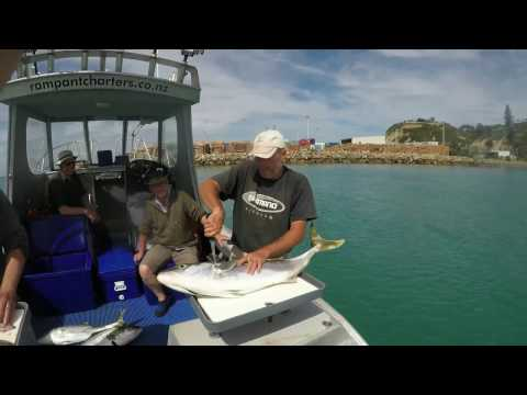 Rampant Fishing Charters 2k17 - Hawkes Bay, NZ