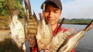 Bắt Cá Sông Nướng Ăn Tại Chỗ | Hương Sơn Green