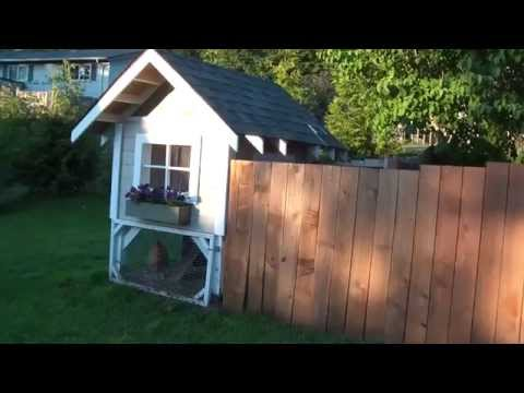 Western Washington Chicken Coop