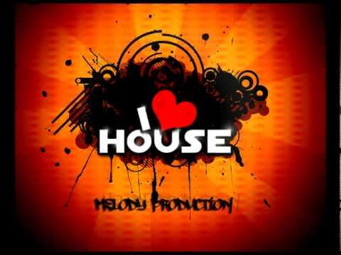 Electro/House Mix 2010 Volume 2