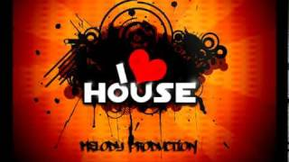 Electro/House Mix 2010 Volume 2