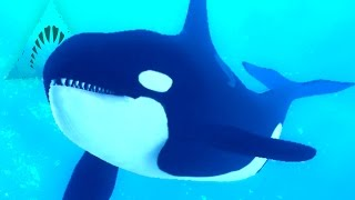 Killer Whale Eats Divers! - Depth | Ep10 HD