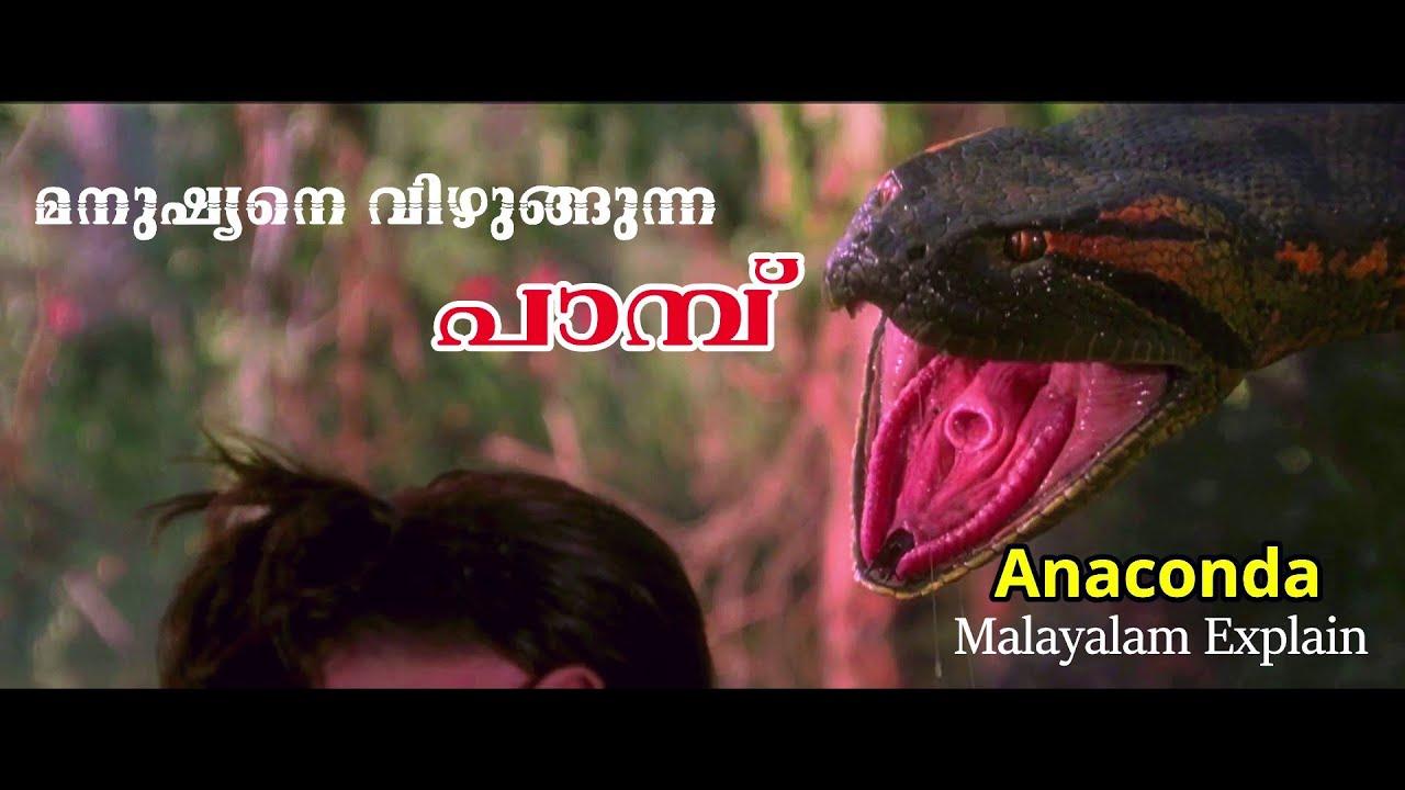 Download Anaconda 1997 Movie Explain Malayalam   Cinima Lokam....