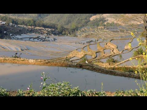 Film Yunnan Sud (Chine)