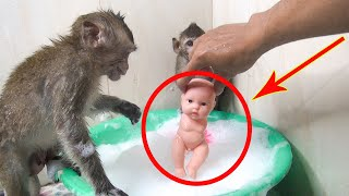 Monkey Too And Monkey JoJo Bathed With Baby Toy No Hands