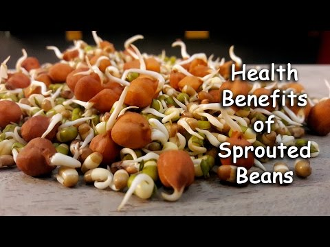 Sprouts Benefits For Health By Sonia Goyal @ ekunji.com