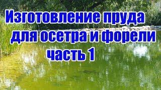 Изготовление пруда для осетра и форели (часть 1)