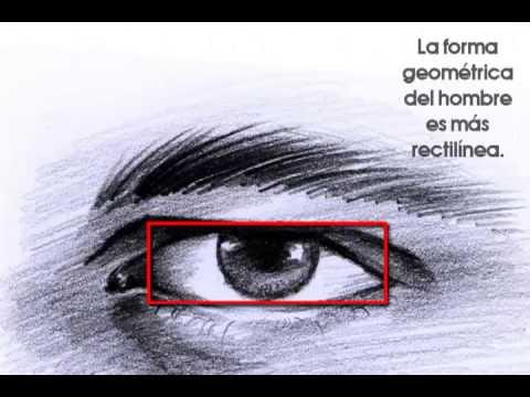 Ojos Femeninos Y Masculinos Diferencias Anatómicas Youtube