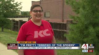'I was grossed out': Doctors find brown recluse spider in woman's ear