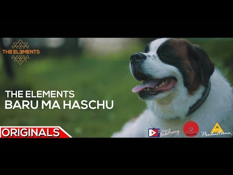 कुकुर Tihar Special | Baru Ma Haschu by The Elements - Official Music Video - Arbitrary Originals