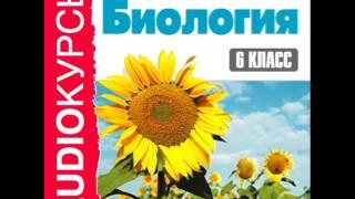 """2000243 Glava 06 Аудиокнига. """"6 класс. Биология"""" Органы цветковых растений"""