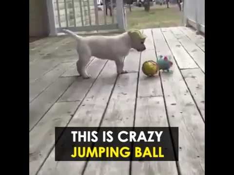 jumping-activation-ball