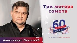 TRI METERA SOMOTA – Aleksandar Petrović