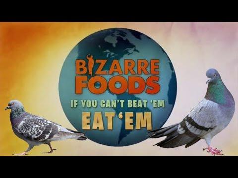 Bizarre Foods S10 - If You Can't Beat'em Eat'em – Feral Pigeons
