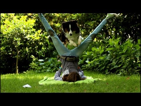 Tricks, some Agility & other Fun | Australian Shepherd Romy