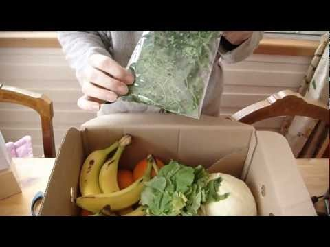 Review of Abel Cole organic vegetable box