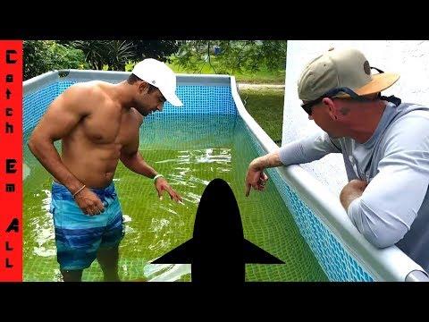 SHAMU RETURNS! GIANT FISH in MEGA POOL POND!