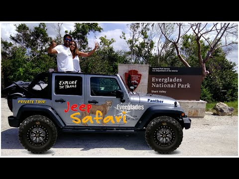 Everglades Jeep SAFARI Ride Through A Cypress Swamp! What A Thrill By Jeep Too!