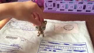 LPS посылка с Авито кошки . Меня обманули🙈