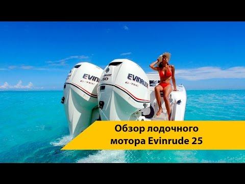 Обзор лодочного мотора Evinrude 25