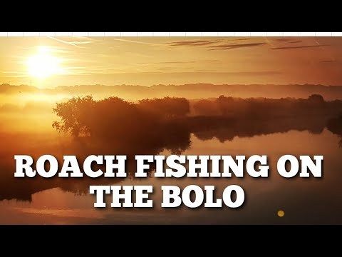Bolo Fishing A Deep River For Roach