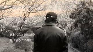 秋岡秀治 - 黒あげは