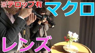 【カメラ】マクロレンズの特徴と使い方【写真】 ※テロップ有