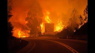 أخبار عالمية - 62 قتيلاً في حريق هائل وسط #البرتغال والحكومة تعلن #الحداد ثلاثة أيام