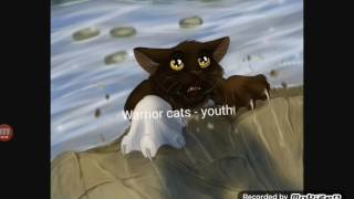 Warrior Cats Youth