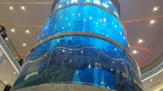 Аквариум в ТЦ Океаниум, метро Славянский бульвар