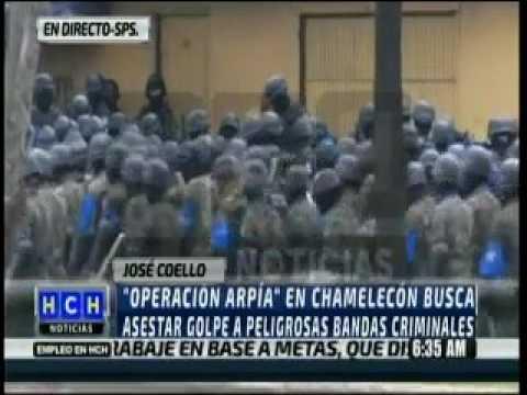 OPERACION ARPIA CONFIRMADA POR FUSINA
