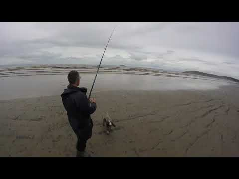 Sea Fishing The Bristol Channel. October 2019. A Great Little Session.