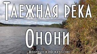Таежная река Онони (в HD) Far East Russian Taiga