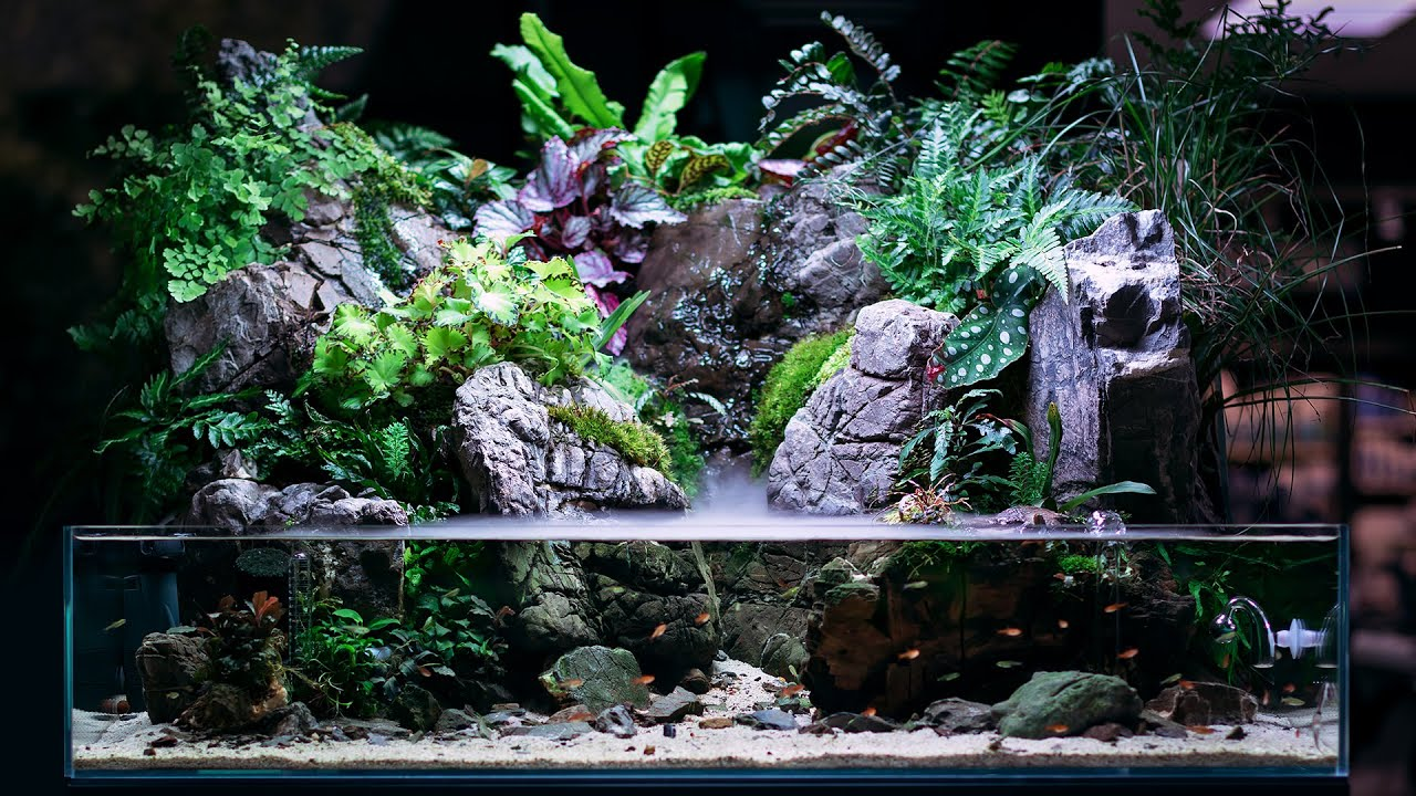 We Gave a NEW LOOK to our MONUMENTAL Paludarium!