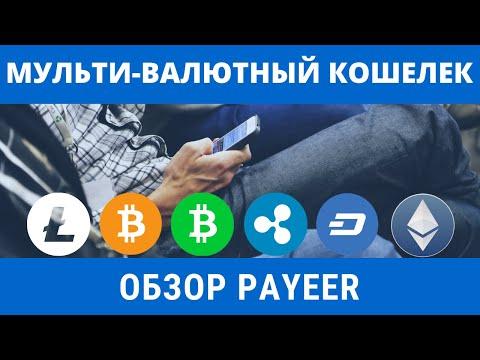 Обзор мульти-валютного кошелька PAYEER    Лимиты и комиссии PAYEER