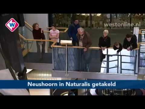 TV West Nieuws, 19 januari 2011 - Westonline.nl