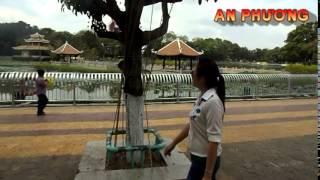 an phuong dam sen 8 3