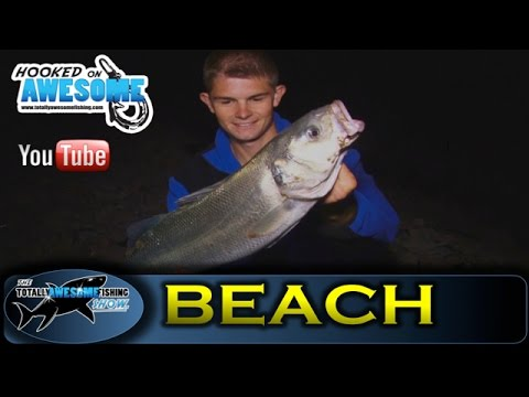 COD and BASS fishing tips - TAFishing Show