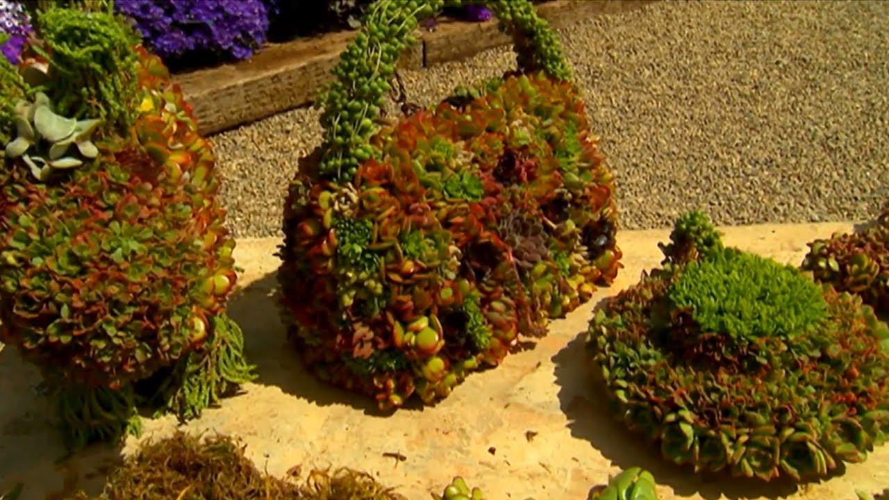 Living Topiary Arrangments | P. Allen Smith Classics - YouTube