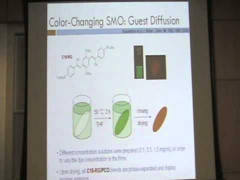 Short Talks on Various Biological Networks