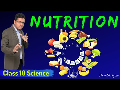 Nutrition-Life Processes (1)  : CBSE Class 10 X Science (Biology)