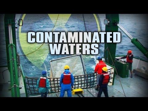 Fishing for data in the radioactive waters off Fukushima